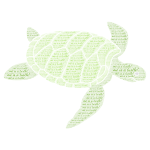 Turtle word cloud art
