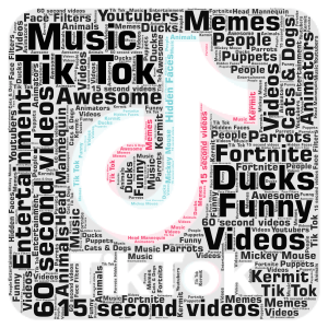 What I see on Tik Tok... word cloud art