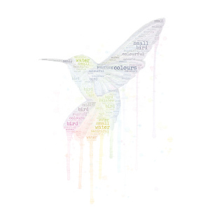 Colourful bird word cloud art
